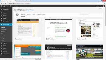 Lynda - WordPress DIY - Setting Up WordPress