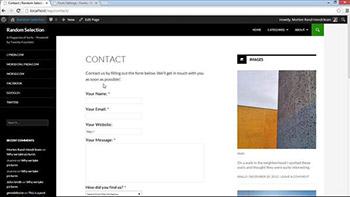 Lynda - WordPress Plugins - Contact Forms
