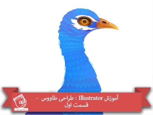 آموزش Illustrator : طراحی طاووس  – قسمت اول