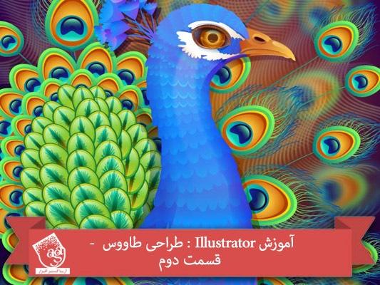 آموزش Illustrator : طراحی طاووس – قسمت دوم