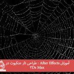 آموزش After Effects : طراحی تار عنکبوت در 3Ds Max