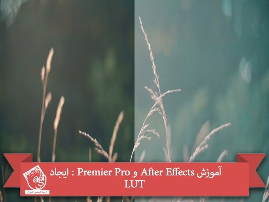 آموزش After Effects و Premier Pro : ایجاد LUT