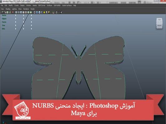 آموزش Photoshop : ایجاد منحنی NURBS برای Maya