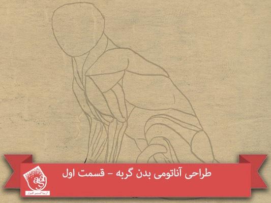 طراحی آناتومی بدن گربه – قسمت اول