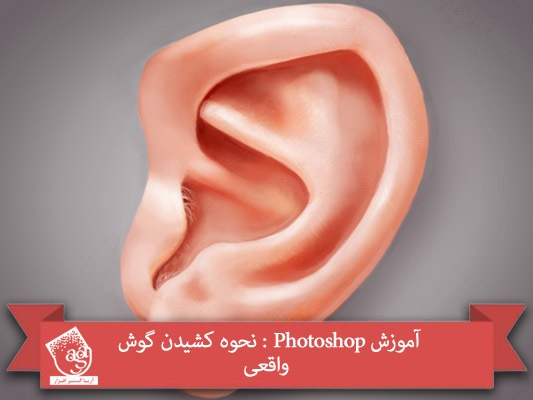 آموزش Photoshop : نحوه کشیدن گوش واقعی