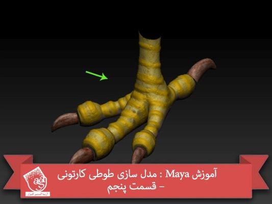 آموزش Maya : مدل سازی طوطی کارتونی – قسمت پنجم