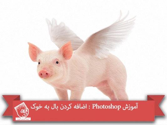 آموزش Photoshop : اضافه کردن بال به خوک