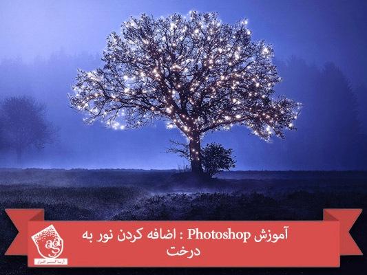 آموزش Photoshop : اضافه کردن نور به درخت