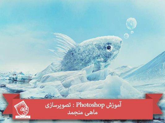 آموزش Photoshop : تصویرسازی ماهی منجمد